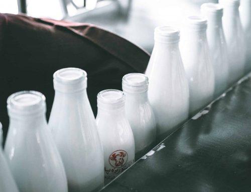 Am I Lactose Intolerant Quiz